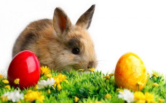 Velikonoční pobyt v Beskydech v termínu 14. 4. – 17. 4. 2017